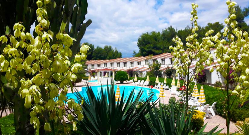 porto_kaleo_piscina_relax_2